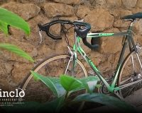 What a bike!? It's so green!!!